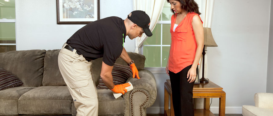 Pontiac, IL carpet upholstery cleaning